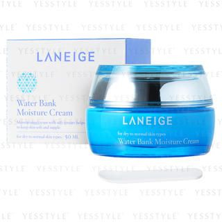 Water Bank Moisture Cream (for dry to normal skin types)