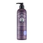 The Face Shop - Dr. Schwarz Shampoo For Damaged Hair 380ml 1596
