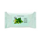 Nature Republic - Mint Solution Hair Fresh Dry Tissue 10pcs 1596