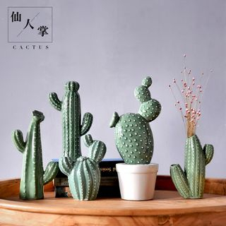 Pottery Cactus Table Display