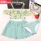 Set: Floral Print Stripe Tankini + Swim Skirt 1596