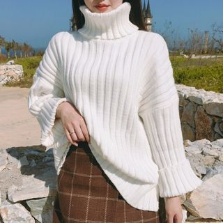 Turtleneck Ribbed Sweater 1055116053