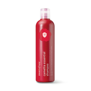 Innisfree - Camellia Essential Shampoo 300ml 300ml 1057273996
