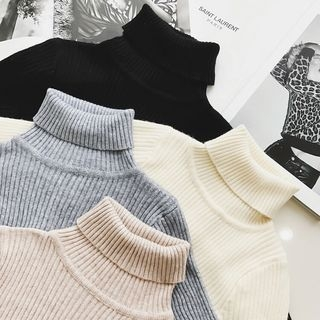 Turtleneck Ribbed Sweater 1054091670