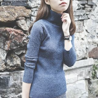 Turtleneck Ribbed Sweater 1055104177