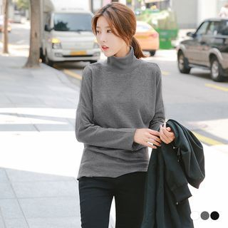 Ribbed Turtleneck Sweater 1055194823