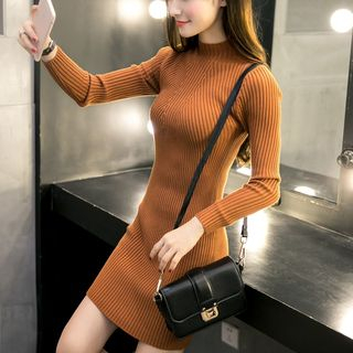 Ribbed Knit Dress 1055913056