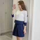 Set: Panel Top + Skirt 1596