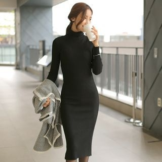 Turtle-Neck Ribbed Knit Dress 1053843709