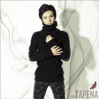 Buy TAPENA Turtleneck Knit Sweater 1021976692