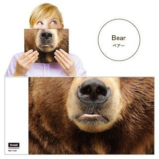 Animal Mask Book Cover (Bear) 1047521758