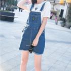 Embroidered Denim Pinafore Dress 1596