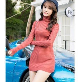 Ribbed Turtleneck Long Sweater 1063689258