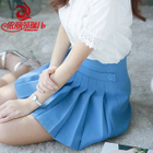 Pleated Panel Mini Skirt 1596