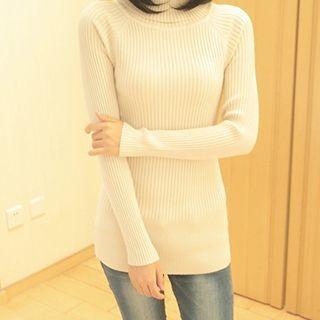 Ribbed Turtleneck Sweater 1053072997
