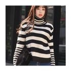Turtle-Neck Striped Knit Top 1596