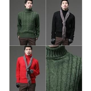 Buy STYLEHOMME Turtleneck Cable Knit Top 1021965500