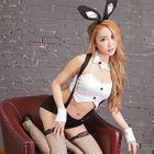 Rabbit Girl Lingerie Costume 1596