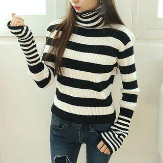 Stripe Turtle-Neck Ribbed Knit Top 1056672233