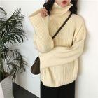 Turtleneck Ribbed Sweater 1596