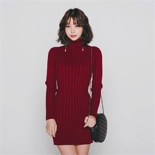 Turtle-Neck Ribbed Knit Mini Bodycon Dress 1064243218