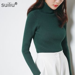 Turtleneck Ribbed Sweater 1053801163