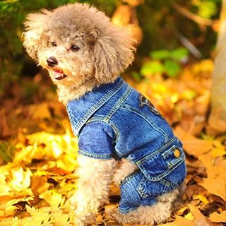 Image of Pet Denim Costume