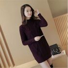Mock-neck Ribbed Knit Dress 1596