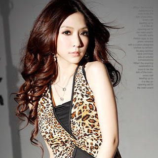 Buy Tian Mu Leopard Print V-Neck Dress 1022804222