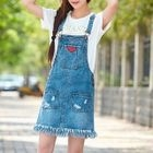 Jumper Denim Dress 1596