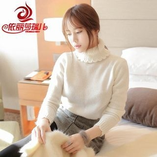 Plain Turtleneck Long Sleeve Knit Top 1055367739