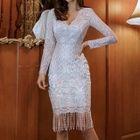 Fringe Hem Long-Sleeve Lace Dress 1596