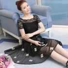 Short-Sleeve Lace Panel A-line Dress 1596