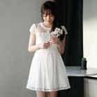 Organza Panel Short-Sleeve Lace Dress 1596