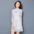 Lace Long-Sleeve Dress 1596