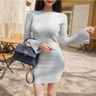 Crew-Neck Ribbed Bodycon Dress 1596