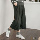 Brushed Pleated Cropped Pants 1596