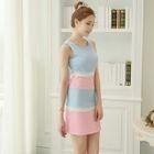 Color Block Sleeveless Sheath Dress 1596