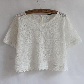Lace Cropped Top 1049031885