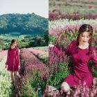 Long-Sleeve Lace Mini Dress 1596