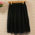 Lace Panel Skirt 1596