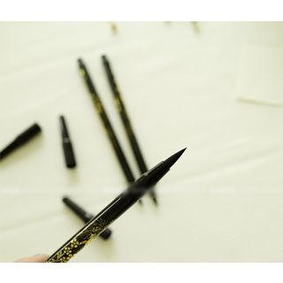 Chinese Calligraphy Ink Brush Pen