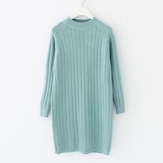Ribbed Knit Dress 1057651096