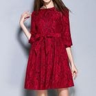 Lace Elbow-Sleeve A-Line Dress 1596