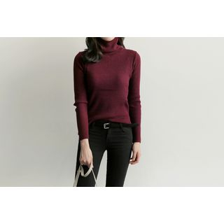 turtle-neck-ribbed-knit-top
