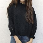 Long-Sleeved Lace Blouse 1596
