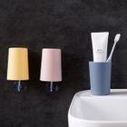 Set: Toothbrush Cup + Hanger 1596