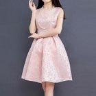 Sleeveless Tulle Dress 1596