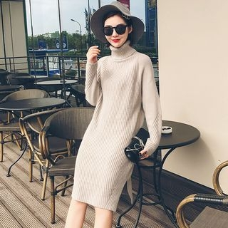 Turtleneck Ribbed Sweater Dress 1056887746
