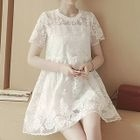 Set: Short-Sleeve Lace Panel A-Line Dress + Camisole 1596